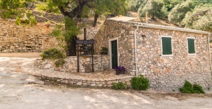 gallery/castelli olive press